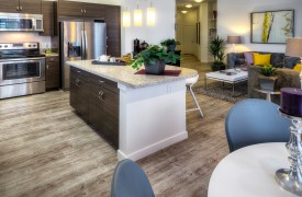 Mixed-use multifamily apartment building unit